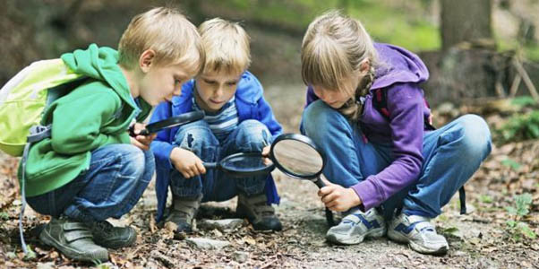 construct outside   Outdoor learning,  Natural playground, Natural play spaces